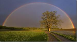 06-big-rainbow
