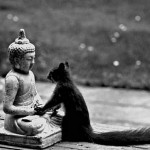 04-buddha